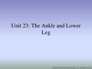 Unit 23:  The Ankle and Lower Leg