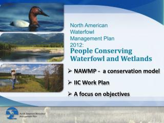 NAWMP -  a conservation model IIC Work Plan A focus on objectives