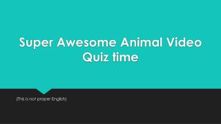 Super Awesome Animal Video Quiz time