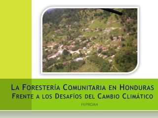 La Forester�a Comunitaria en Honduras Frente a los Desaf�os del Cambio Clim�tico