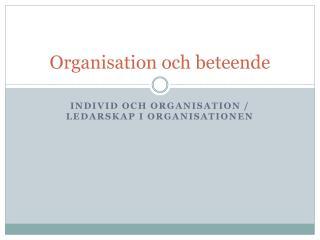 Organisation och beteende