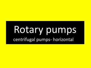 Rotary pumps centrifugal pumps -  horizontal