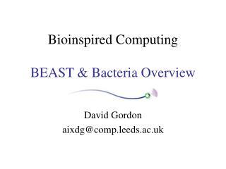 Bioinspired Computing  BEAST  Bacteria Overview