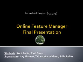 Online Feature Manager Final Presentation
