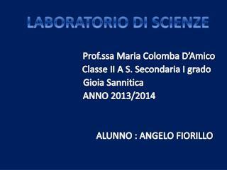 Prof.ssa  Maria Colomba D'Amico