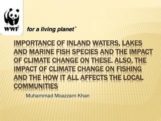 Muhammad  Moazzam  Khan