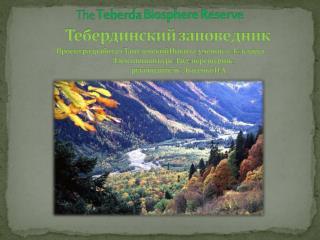 prezentaciya teberdinskiy zapovednik2012 2