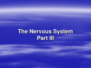 The  Nervous System Part III