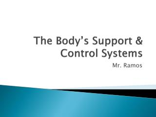 The Body's Support & Control Systems