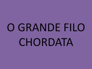 O  GRANDE FILO  CHORDATA