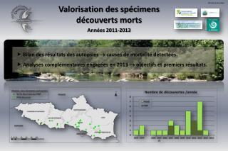 Valorisation des spécimens découverts morts Années 2011-2013