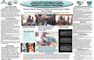 Integrated Malaria Management through  Development of a More Efficient Handicraft