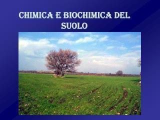 CHIMICA E BIOCHIMICA DEL SUOLO