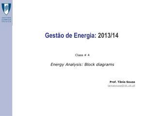 Gestão  de  Energia :  2013/14