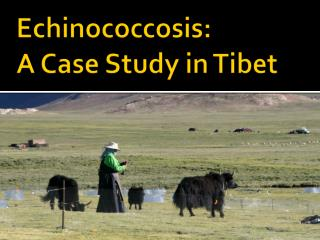 Echinococcosis : A Case Study in Tibet