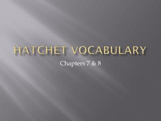 Hatchet  VOCabulary