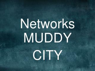 Networks MUDDY CITY