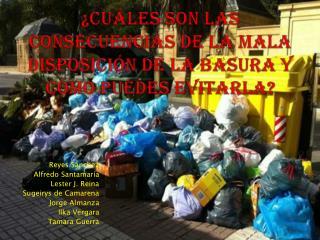 ¿Cuáles son las consecuencias de la mala disposición de la basura y cómo puedes evitarla?
