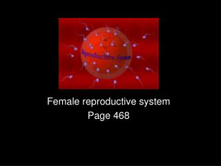 Female reproductive system Page 468