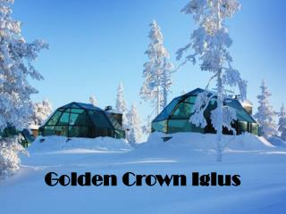 Golden  Crown Iglus