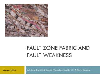 Fault zone fabric and fault weakness