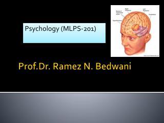 Prof.Dr . Ramez N.  Bedwani