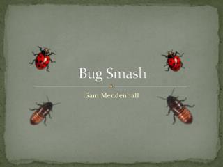 Bug Smash