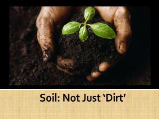 Soil : Not  Just  ' Dirt '