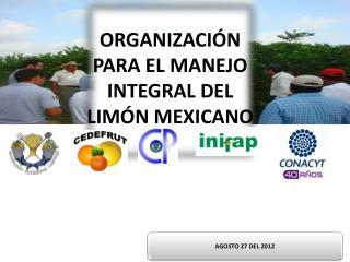 ORGANIZACIÓN PARA EL MANEJO INTEGRAL DEL LIMÓN MEXICANO