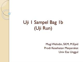 Uji  1  Sampel  Bag 1b  ( Uji  Run)