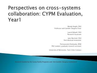 Perspectives on cross-systems collaboration: CYPM Evaluation, Year1