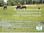 Managing Manure from Domestic Animals to Avoid Negative Impacts