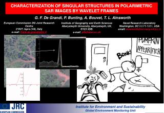 CHARACTERIZATION OF SINGULAR STRUCTURES IN POLARIMETRIC SAR IMAGES BY WAVELET FRAMES