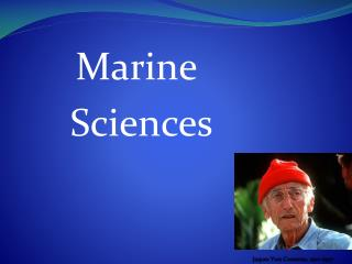 Marine Sciences