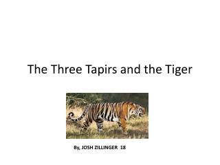 The Three Tapirs and the Tiger
