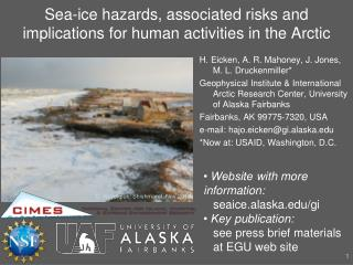 Sea-ice hazards, associated risks and implications for human activities in the Arctic