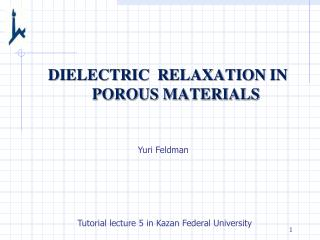 DIELECTRIC  RELAXATION  IN POROUS MATERIALS