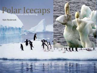 Polar Icecaps