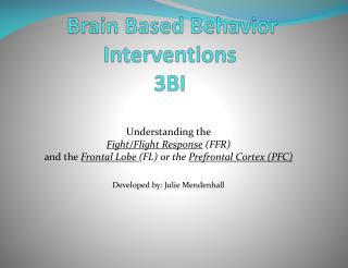 Brain Based Behavior Interventions 3BI