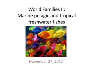 World Families II: Marine pelagic and tropical freshwater fishes