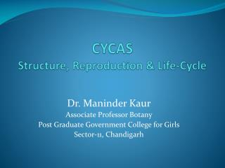 CYCAS Structure, Reproduction & Life-Cycle
