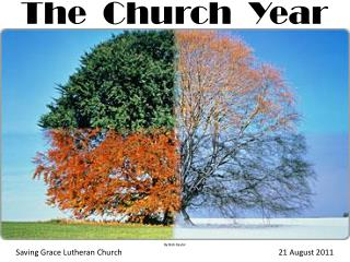 The  Church  Year