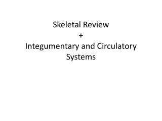 Skeletal Review + Integumentary and Circulatory Systems