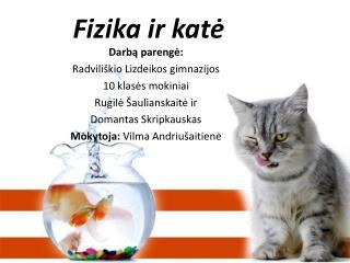 Fizika ir katė