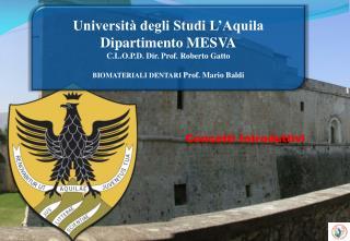 Università degli Studi L'Aquila Dipartimento  MESVA C.L.O.P.D.  Dir. Prof. Roberto Gatto
