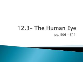 12.3� The Human Eye