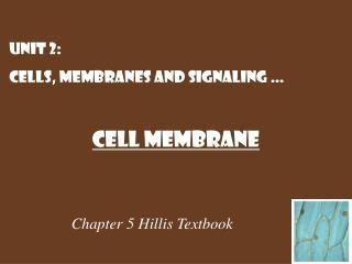 Chapter 5  Hillis  Textbook