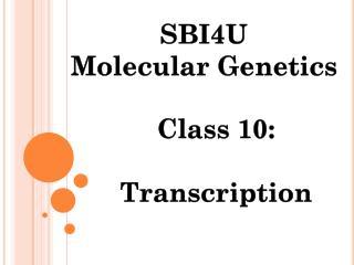 Class 10:  Transcription