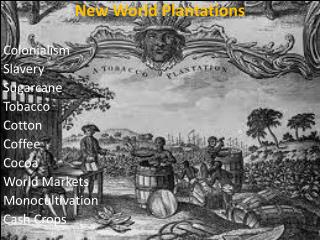 New World Plantations Colonialism Slavery Sugarcane Tobacco Cotton Coffee Cocoa World Markets