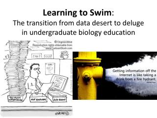 Learning to Swim :  The transition from data desert to deluge in undergraduate biology education